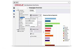 Oracle Data Visualization - 2.jpg