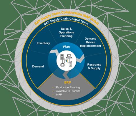 SAP IBP - supply chain rueda