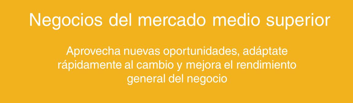 Tamaño negocio - medio superior SAP.png