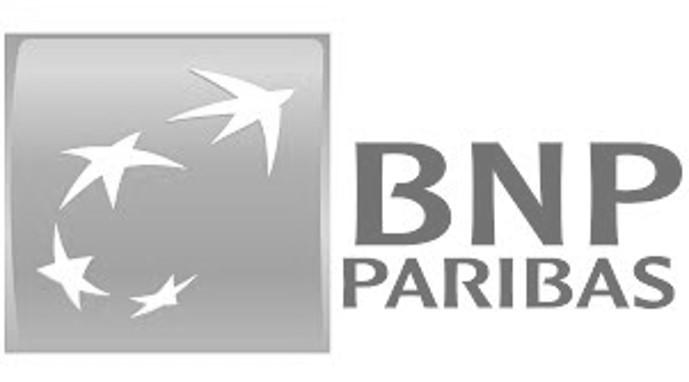 logo bnp gris